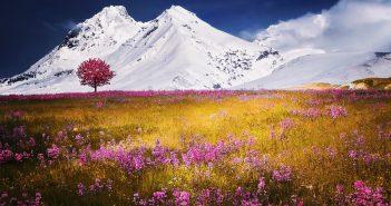 hình nền thiên nhiên thơ mộng