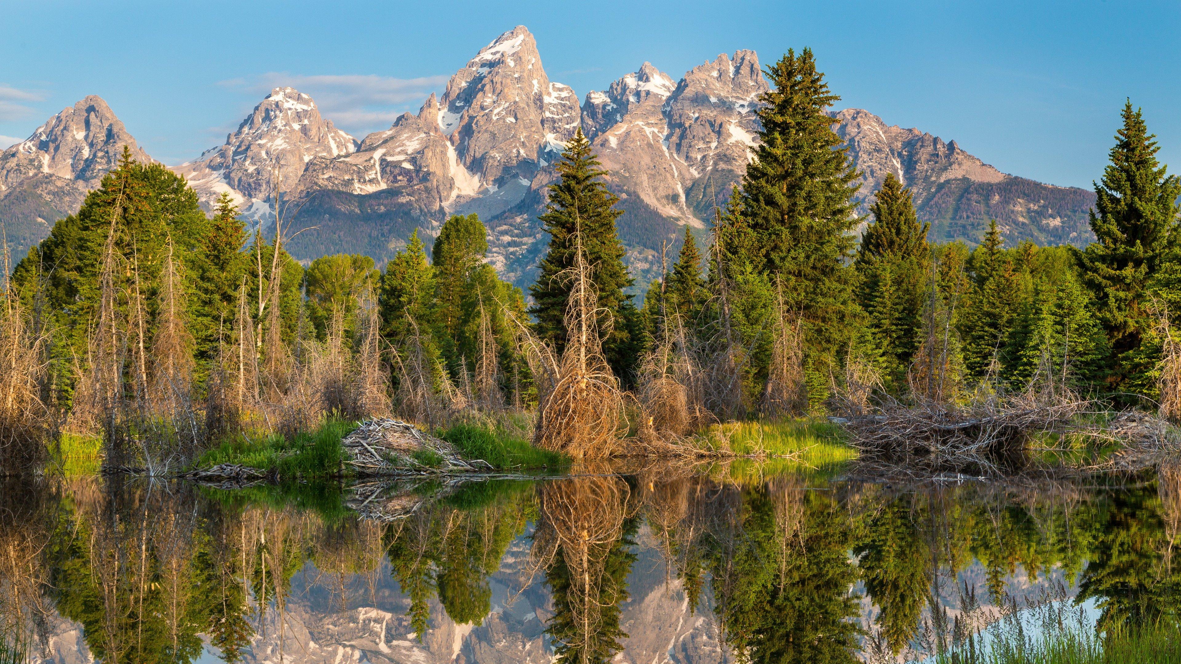 hình nền thiên nhiên đẹp