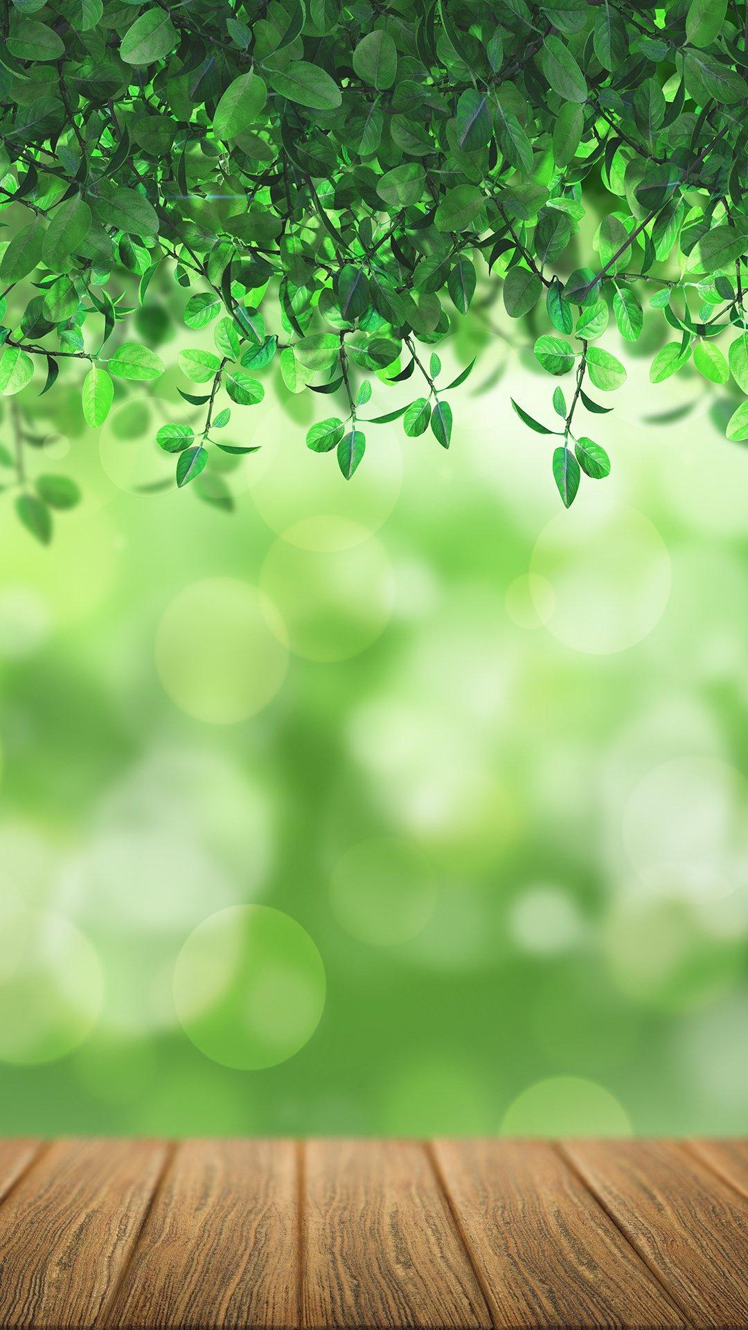 Hãy hòa mình vào thiên nhiên tươi đẹp và tươi mát, đồng thời làm mới cho chiếc điện thoại yêu quý của bạn bằng cách tải những hình ảnh về thiên nhiên, ...