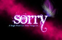 hình nền xin lỗi sorry