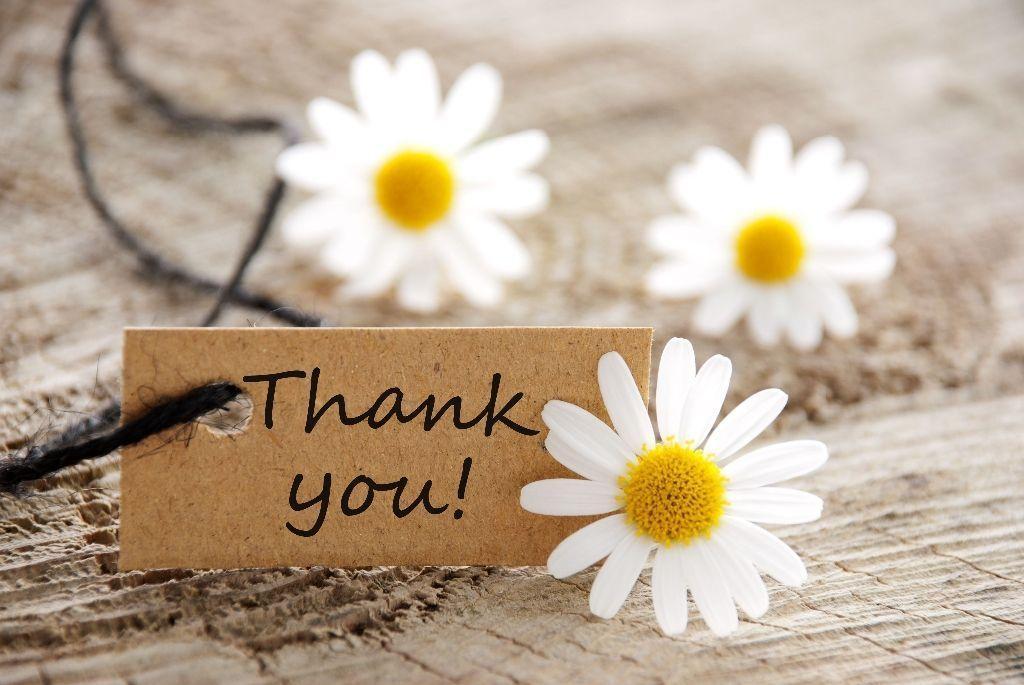 hinh nen thank you 12