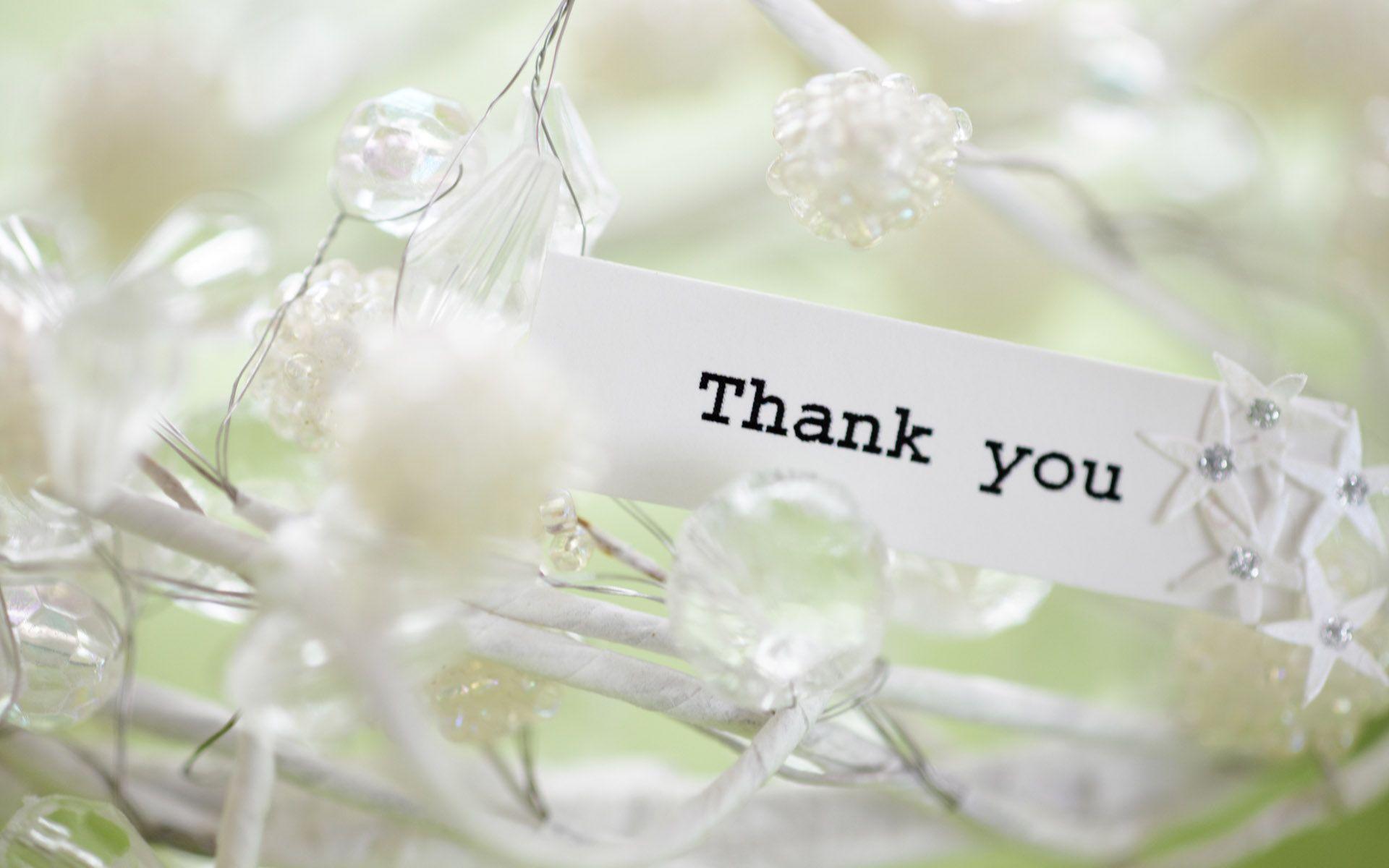 hinh nen thank you 25
