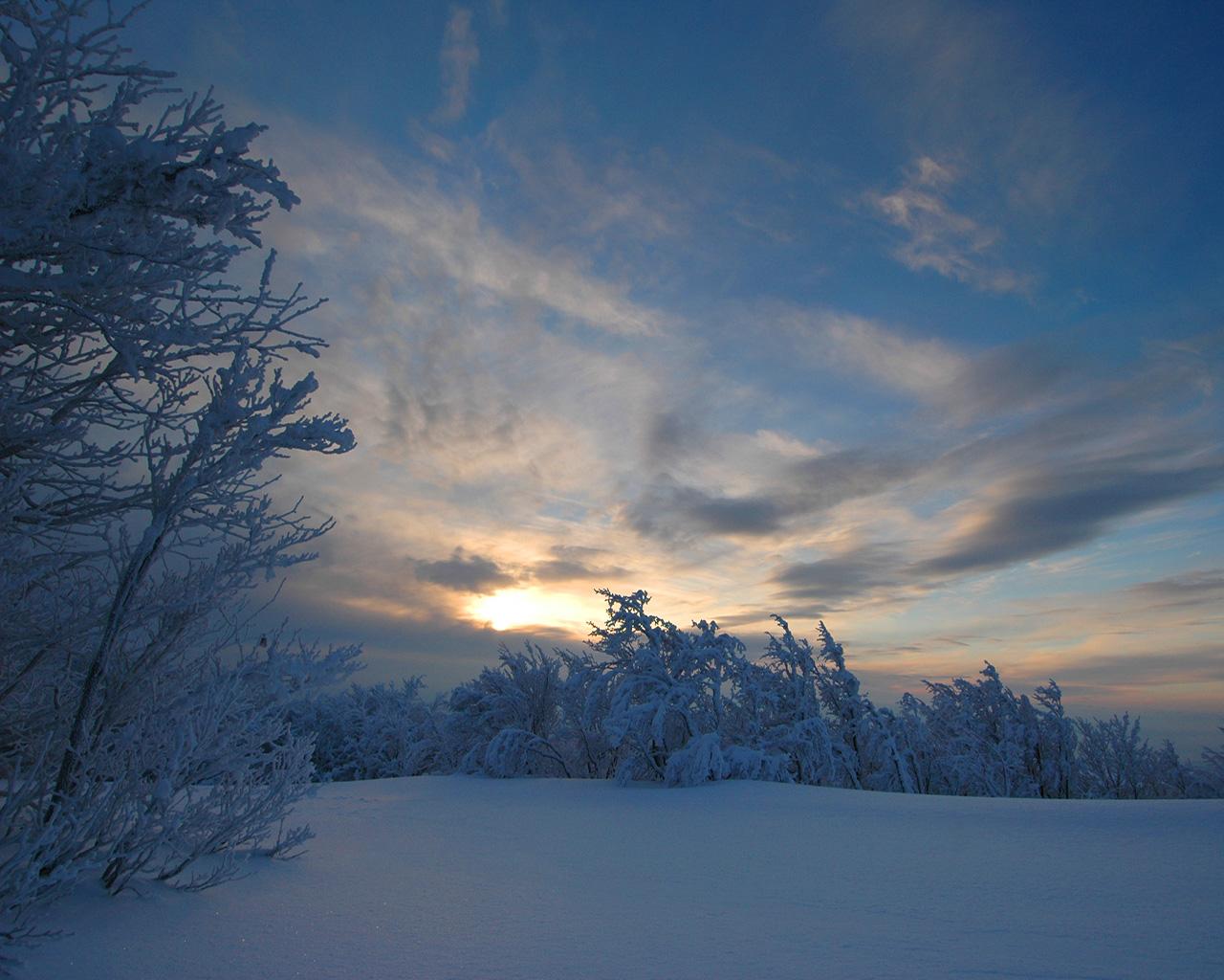 ảnh phong cảnh mùa đông
