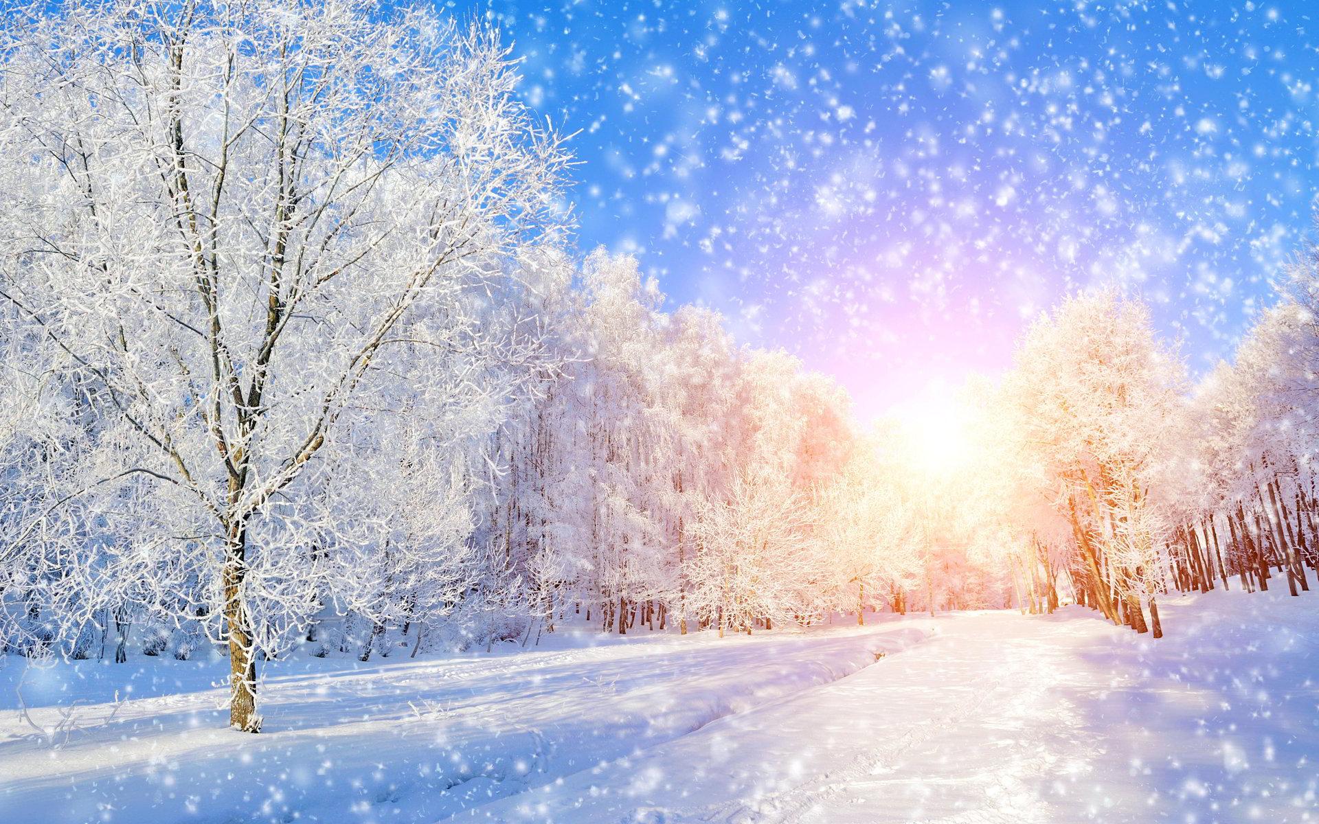 Trên đây là bộ sưu tập những hình nền về mùa đông đẹp nhất trên thế giới không thể cưỡng lại được. Nếu bạn yêu thích và muốn đặt chúng làm hình ...