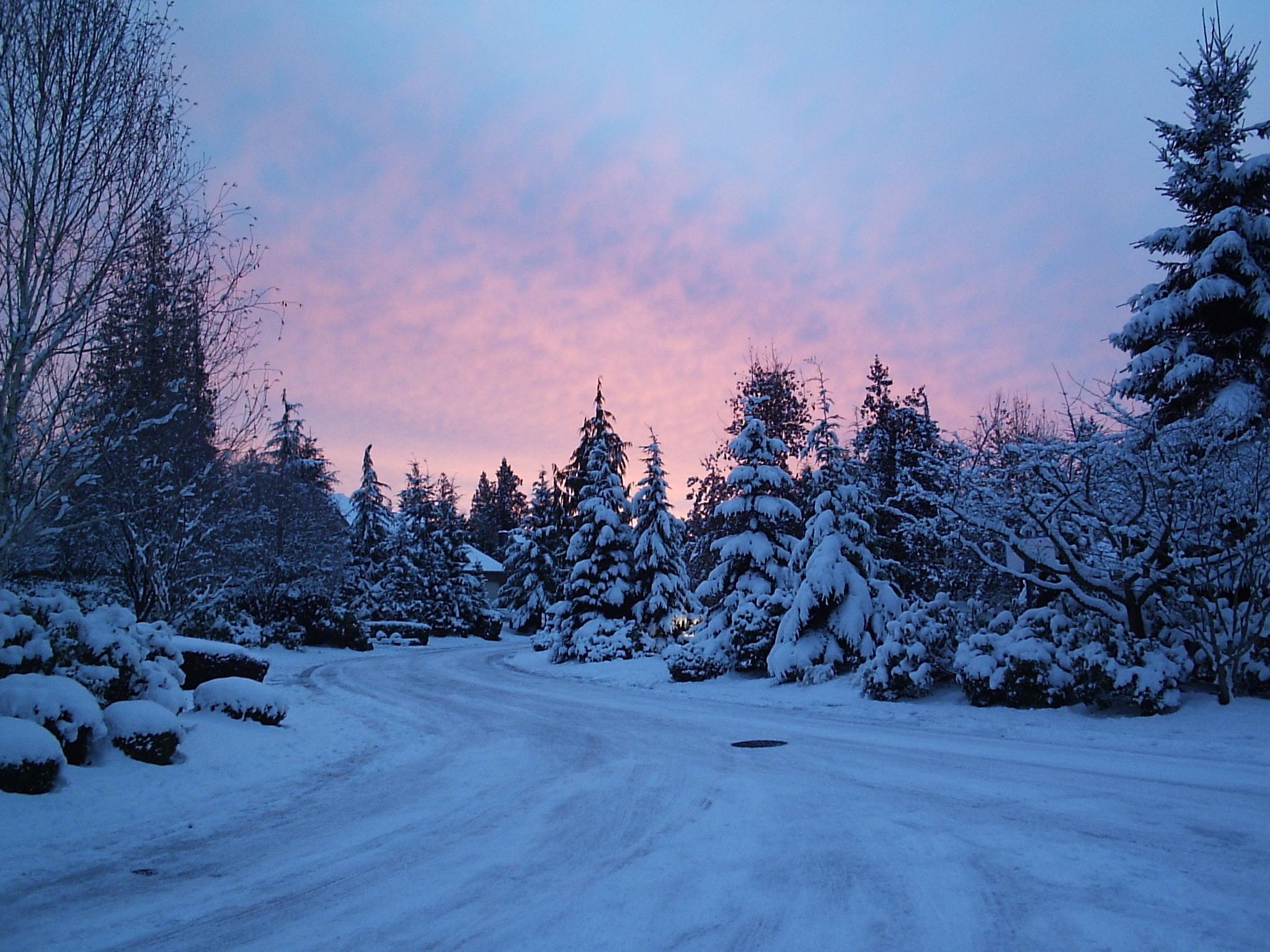 hình nền phong cảnh mùa đông
