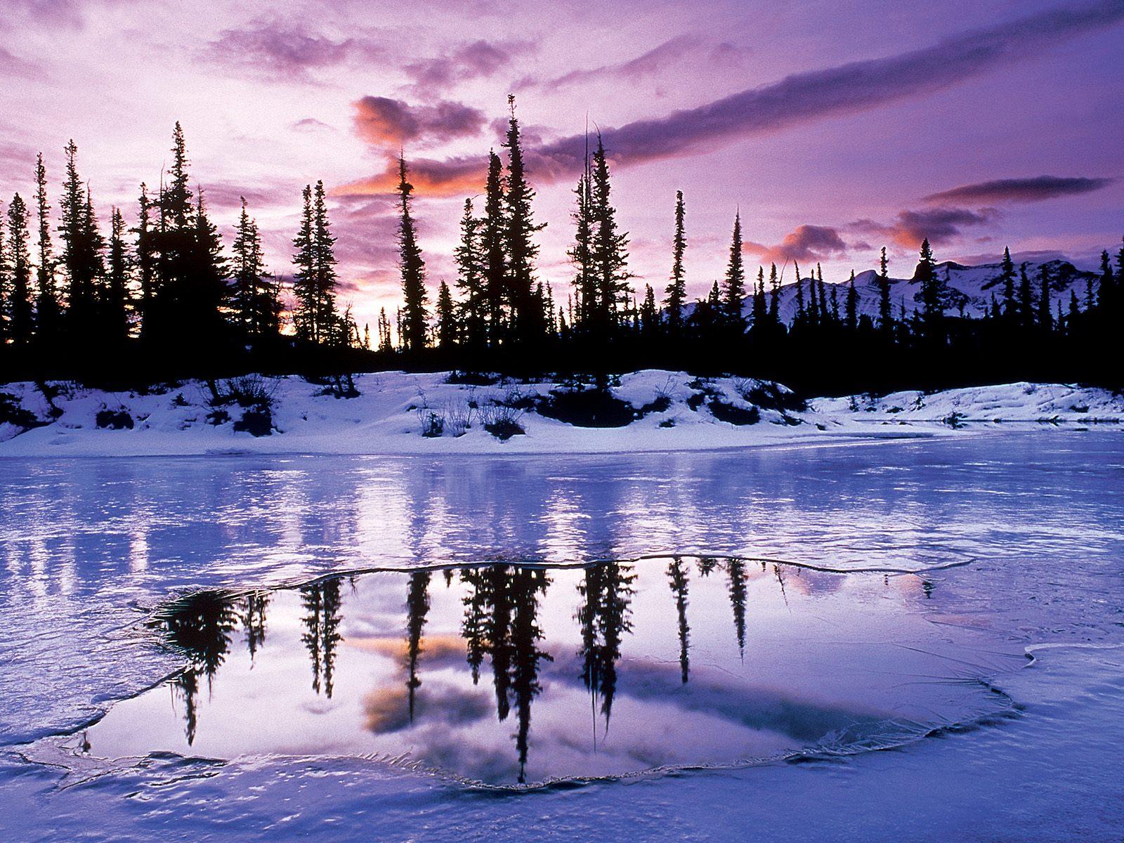 xem ảnh phong cảnh mùa đông