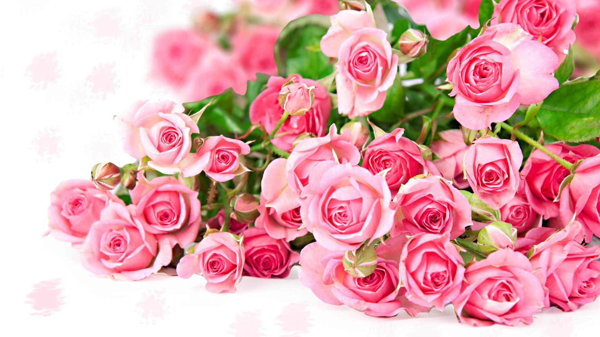bo hoa hong dep 9