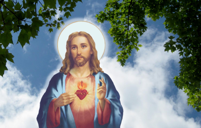 chua jesus 14