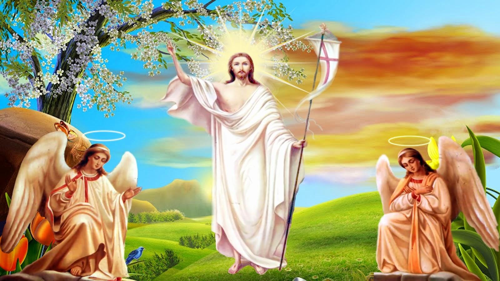 Để phục vụ cho những cộng đồng người theo Công giáo, chúng tôi gửi đến các bạn bộ ảnh này, những ai yêu mến và tin tưởng vào Đức Chúa Giêsu cũng ...