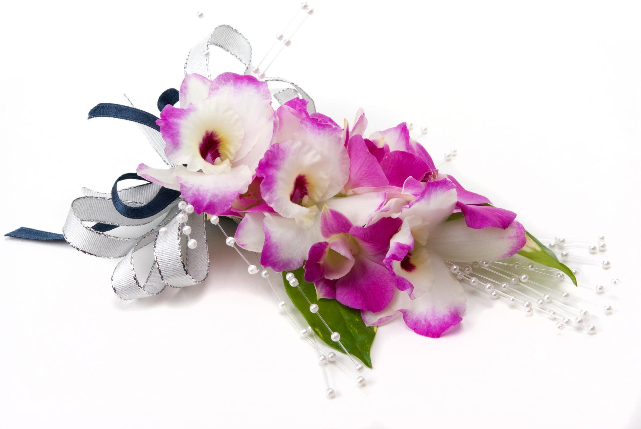 hinh nen hoa lan dep 46