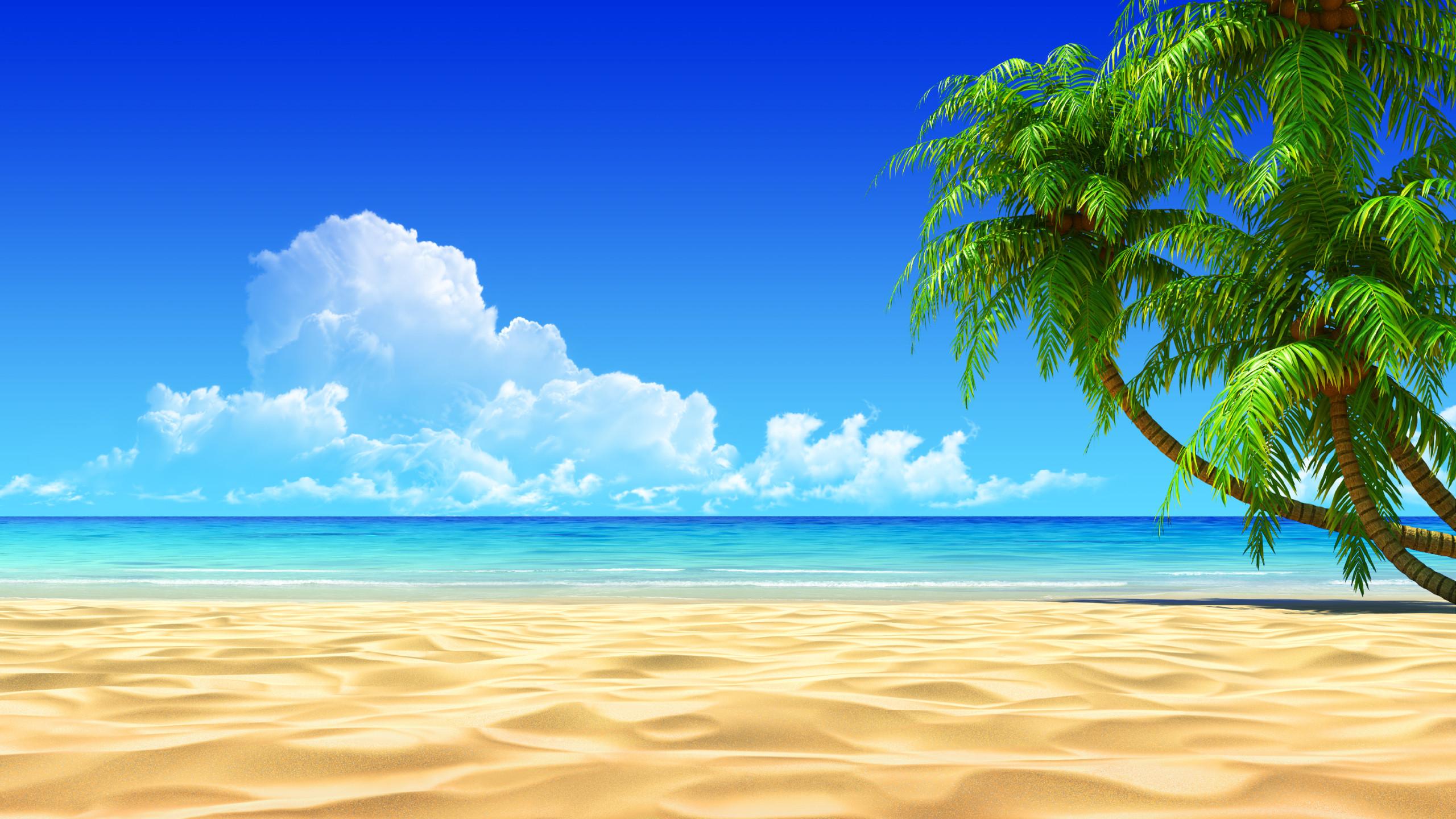 tải hình ảnh đẹp về biển