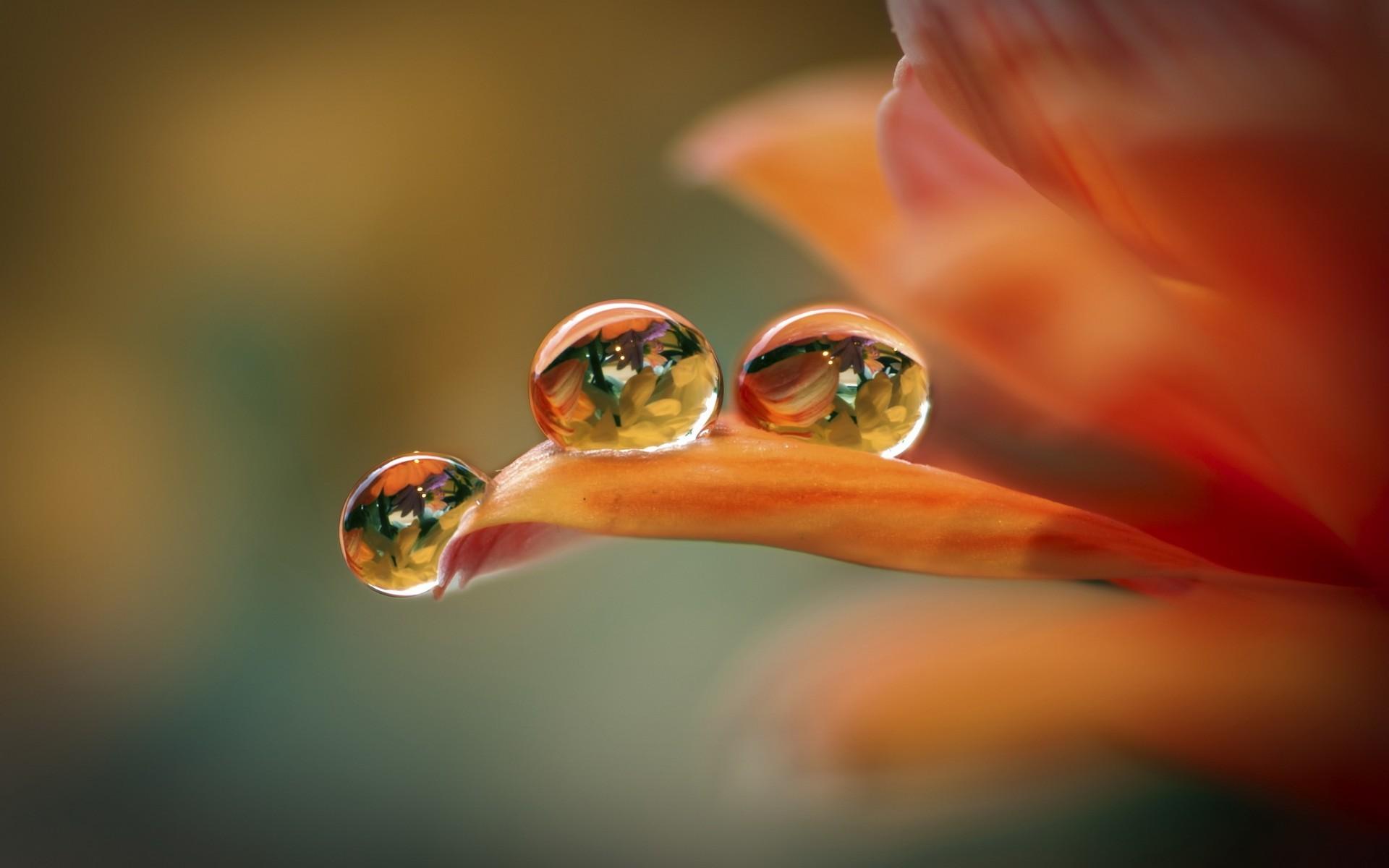 hình nền giọt nước full hd