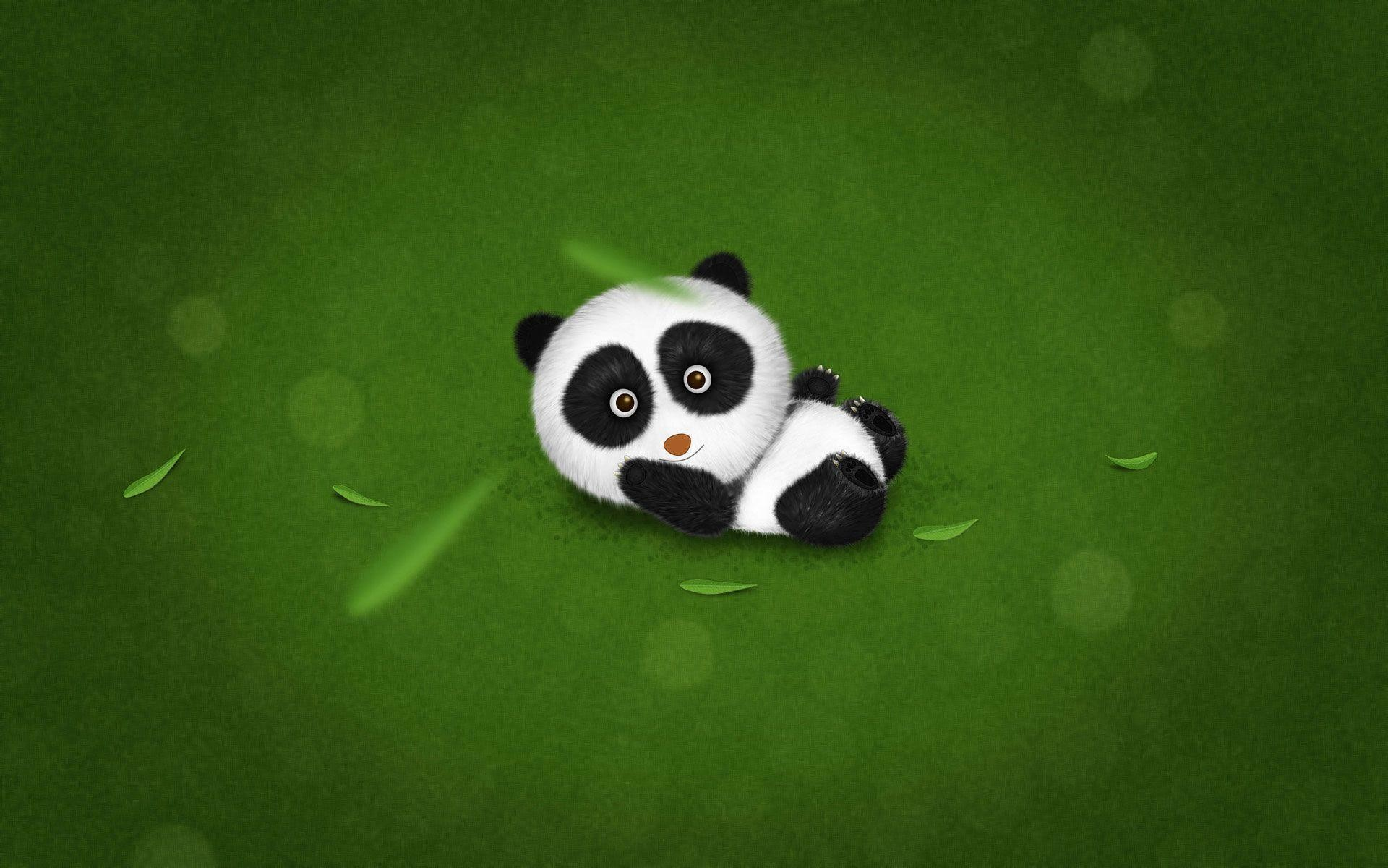 hinh gau truc panda 22