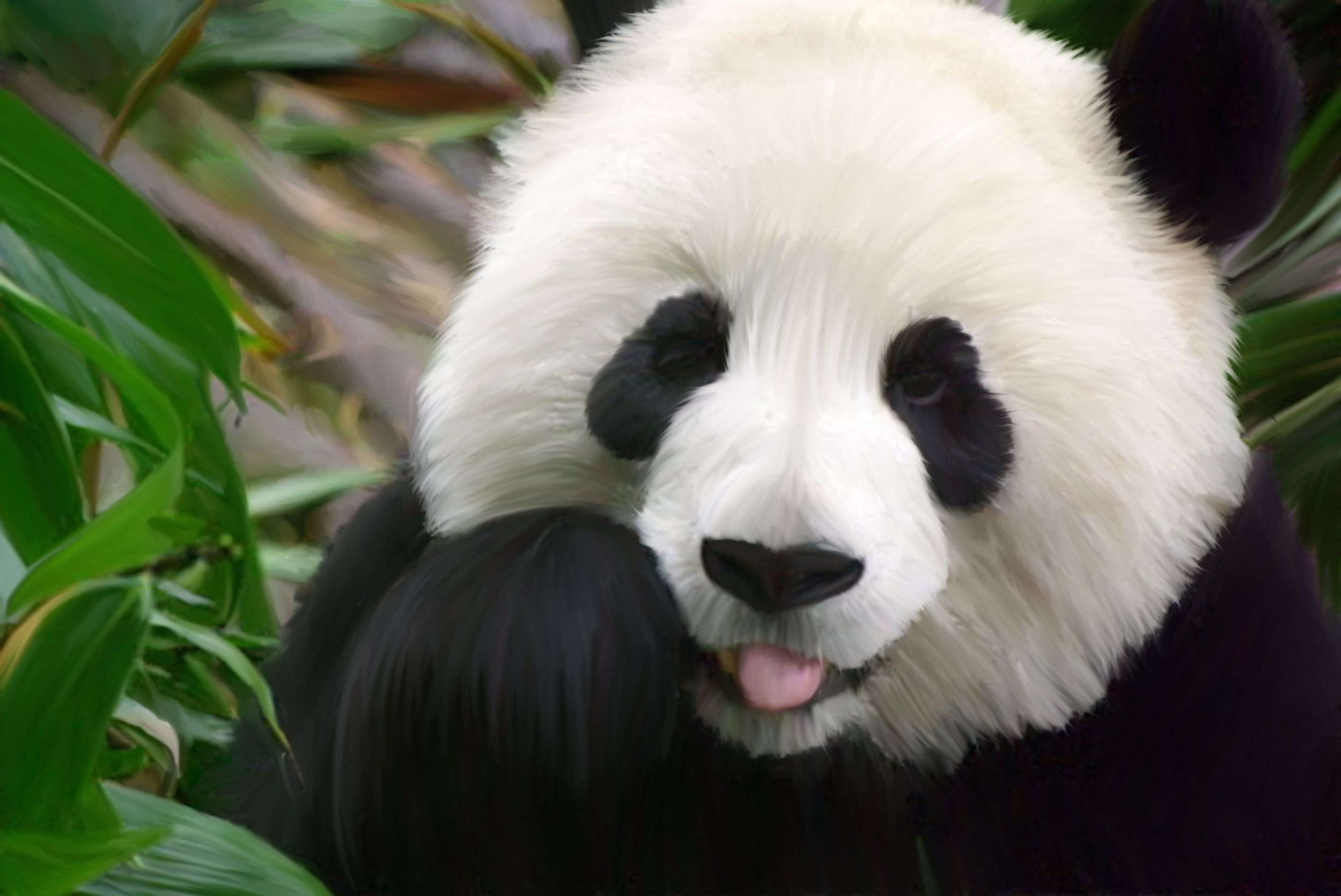 hinh gau truc panda 40