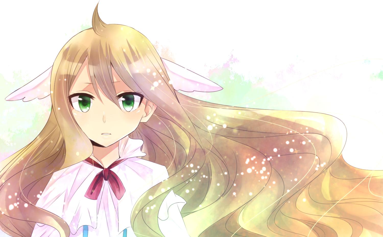 Hình nền Fairy Tail đẹp