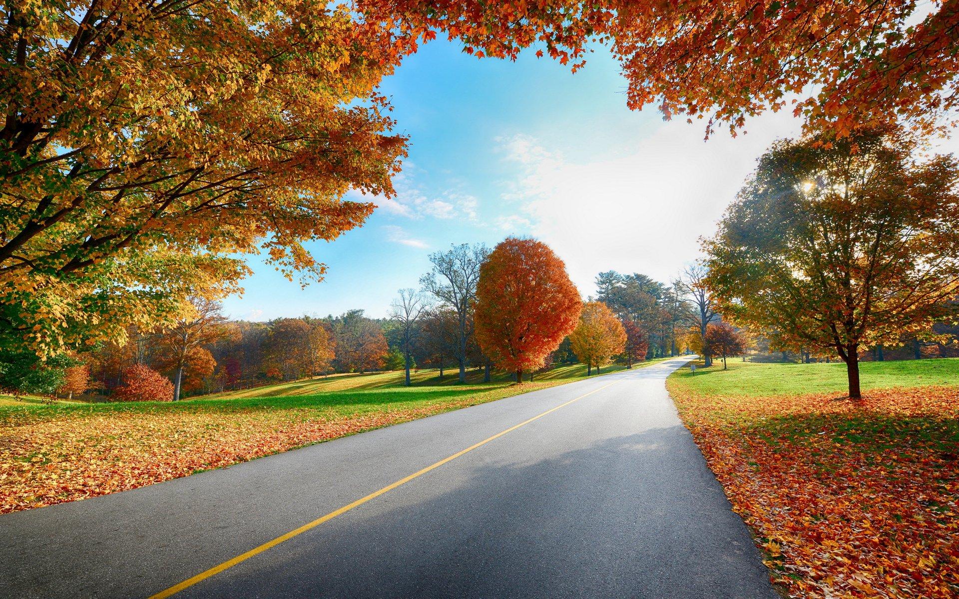 ảnh con đường đẹp nhất