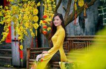 Ảnh tết màu vàng đẹp