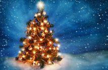 Hình nền cây thông Noel 2019 đẹp nhất