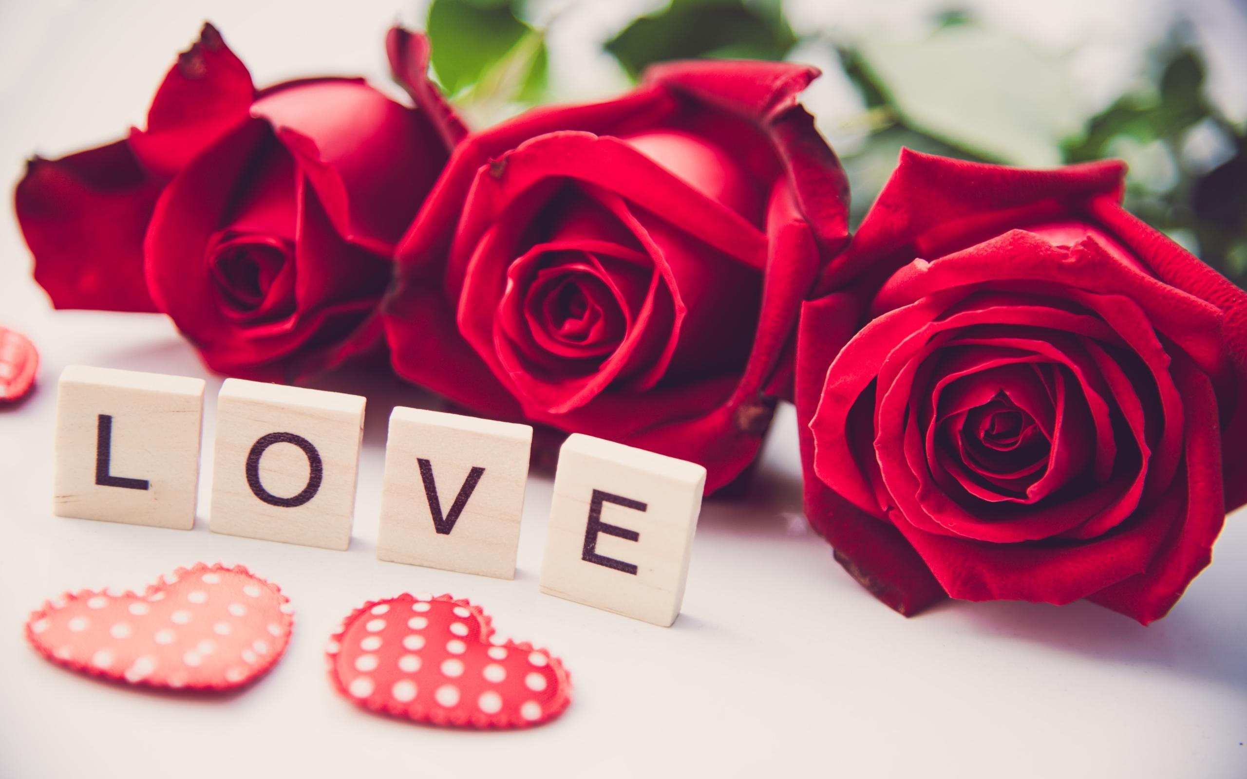 ảnh hoa hồng i love you